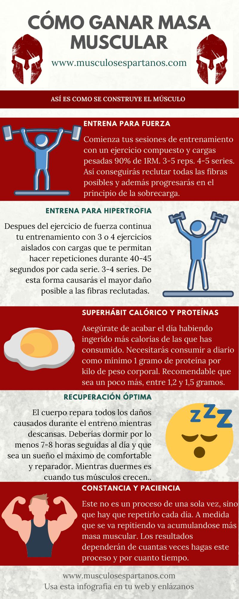 infografia ganar masa muscular