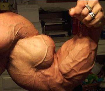 biceps grandes