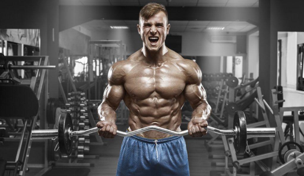 Desarrollo de masa muscular con entrenamiento con pesas