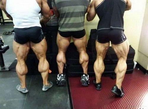 Piernas grandes. Hipertrofia muscular en piernas.