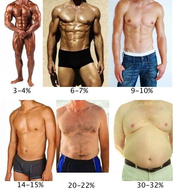 grasa abdominal en hombres