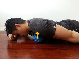ejercicios para hipercifosis liberar musculos pecho