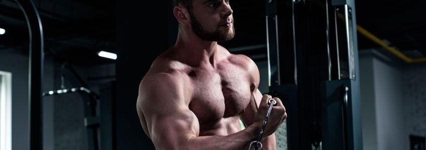 estimular crecimiento del músculo