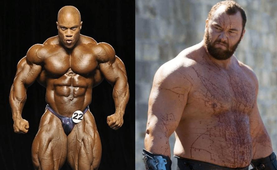 genetica muscular