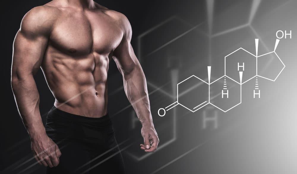 hormonas anabólicas