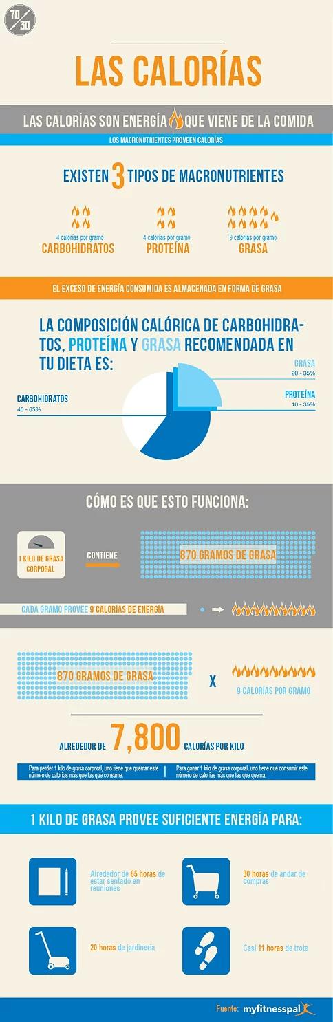 macronutrientes infografía