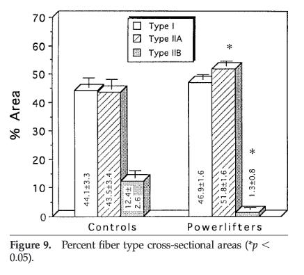 fibras tipo 1 y tipo 2 en entrenamiento de fuerza